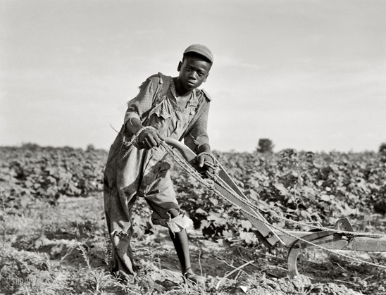Dorothea Lange los mejores fotógrafos del mundo